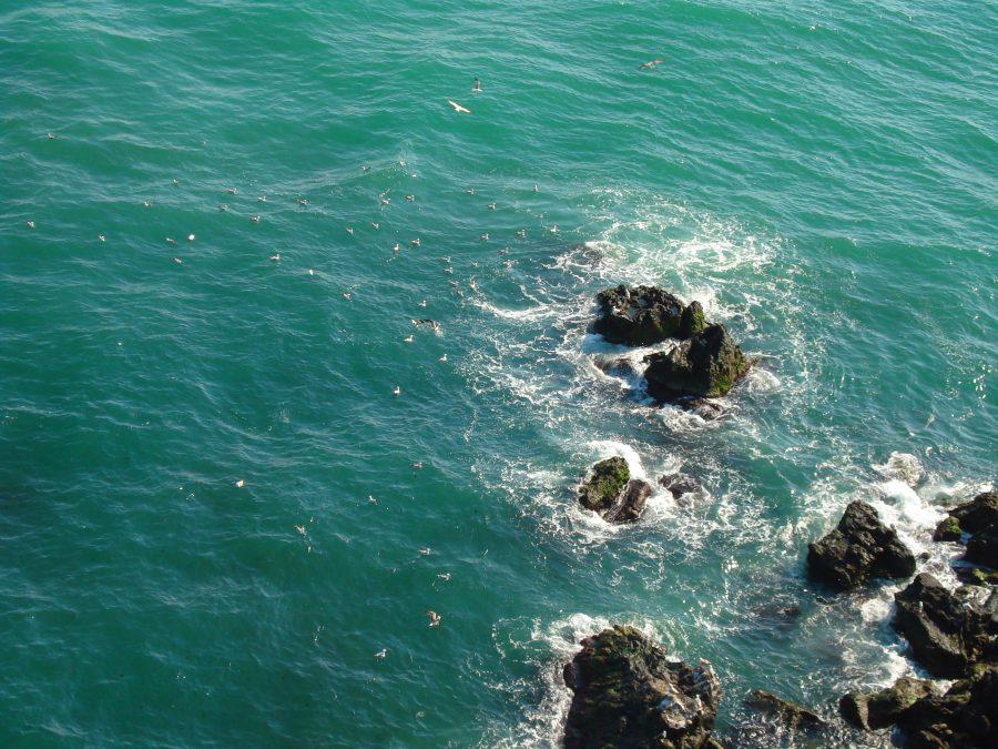Marea Neagră e albastră la Kaliakra