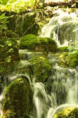 Apă curgând pe mușchi, Lacurile Plitvice, Croația