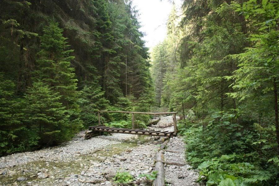 Sucha Bela, traseu din camping Podlesok, Slovansky Raj, Slovacia
