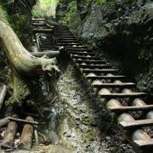 Slovacia: Trasee prin Slovensky Raj si camping Podlesok