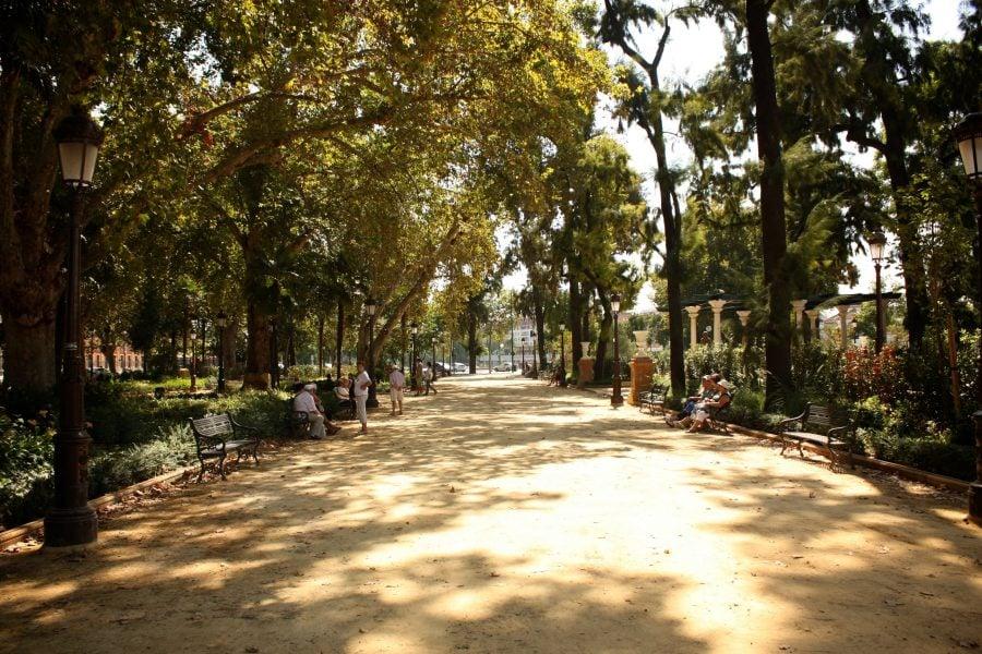 Plimbare prin parc spaniol, vara
