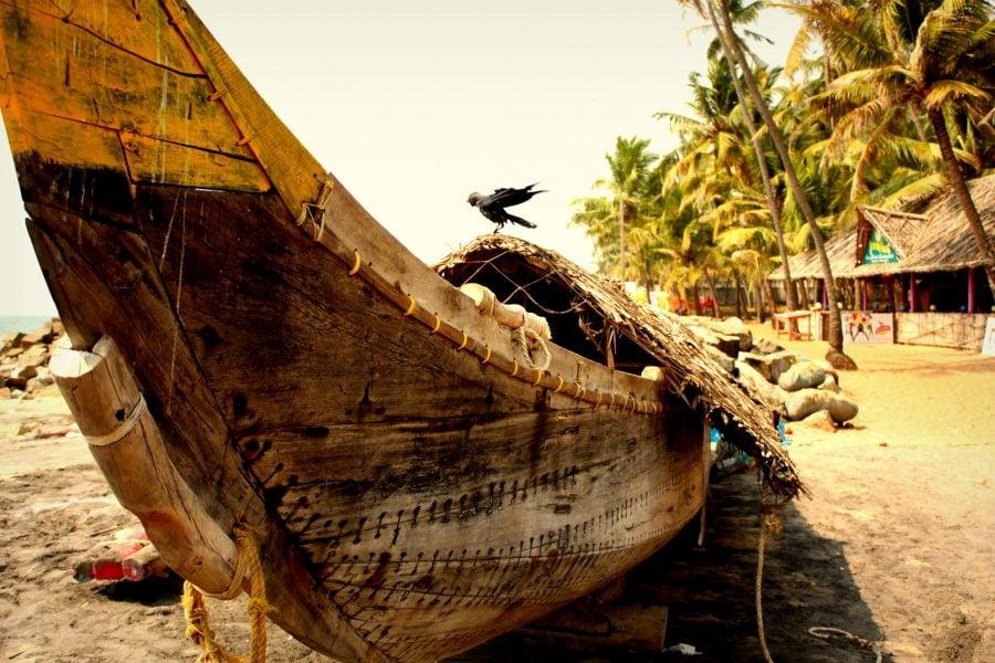 Barcă sud indiană din lemn cu legături din sfoară și cioară veselă, Varkala, Kerala, India