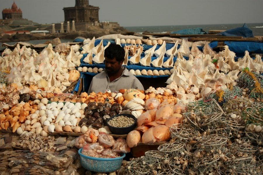 Vânzător de suveniruri din scoici în Kanyaumari, Tamil Nadu