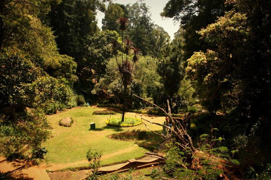 Grădina Botanică din Ooty, Tamil Nadu, India