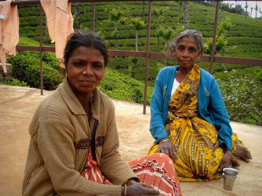 Lucrătoare indience pe plantația de ceai, Ooty, India