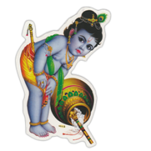 India: Fa singur curatenie