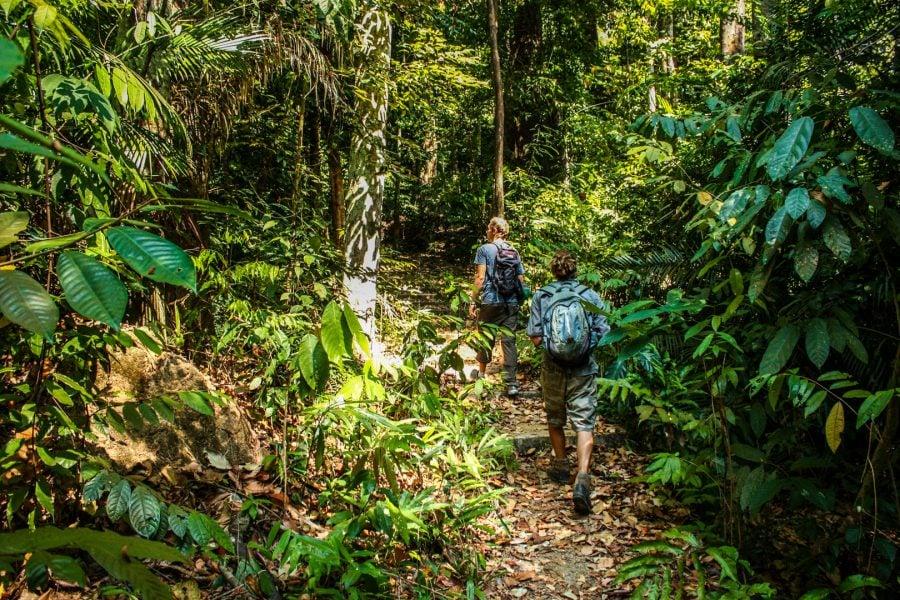 Urcus prin jungla din Langkawi