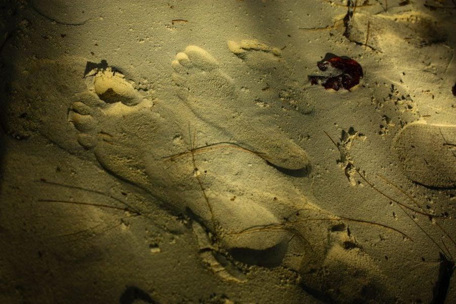 Tălpi pe nisip