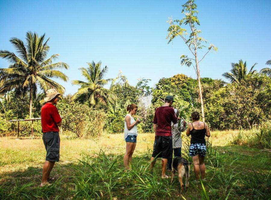 Lecția de permacultură, grup de voluntari