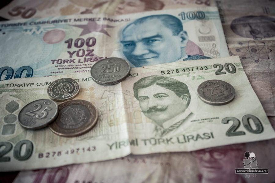 Bani turcești
