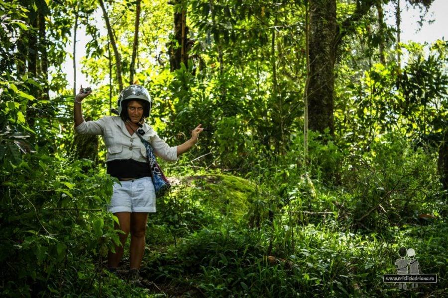Adriana epxlorează jungla