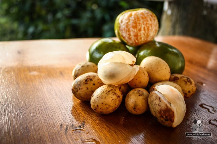 Fructe exotice din Indonezia