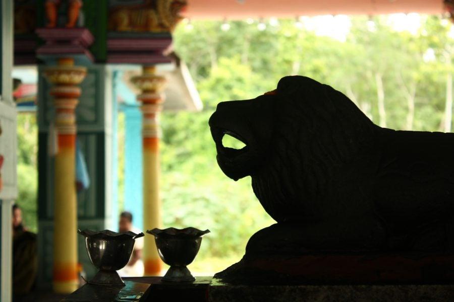 Mic altar cu leu în templu indian
