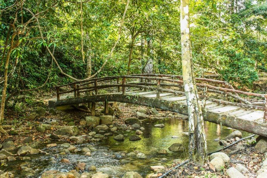 Pod peste râu în parc, Langkawi