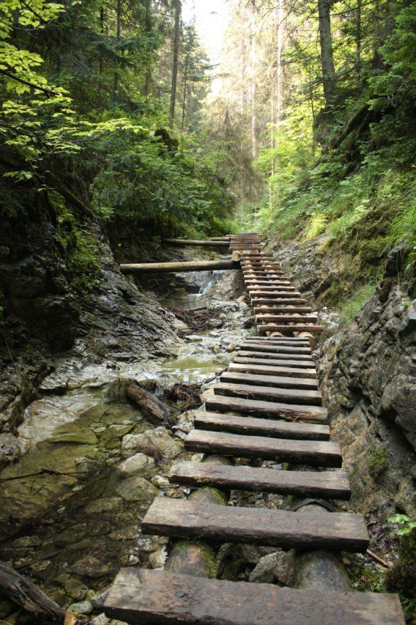 Poduri de lemn pe un traseu prin munți, Slovensky Raj, Slovacia