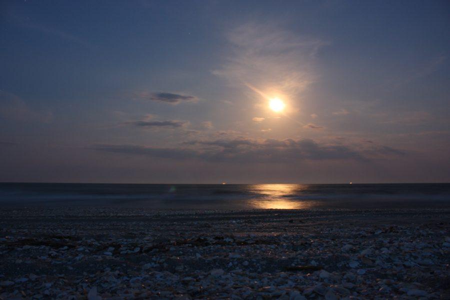 Lună plină, Vadu, Rezervația Delta Dunării