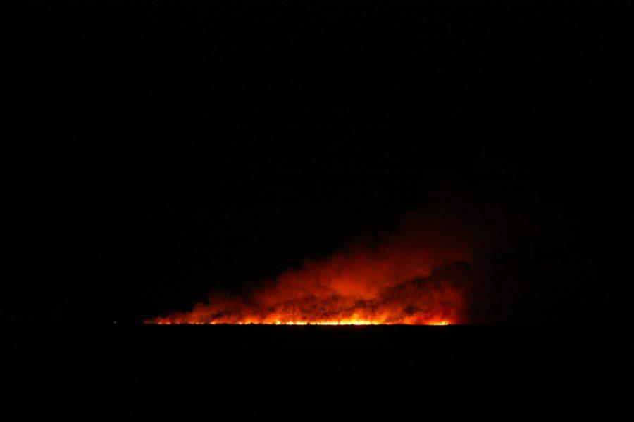 Incendiu noaptea la Vadu, Rezervația Delta Dunării