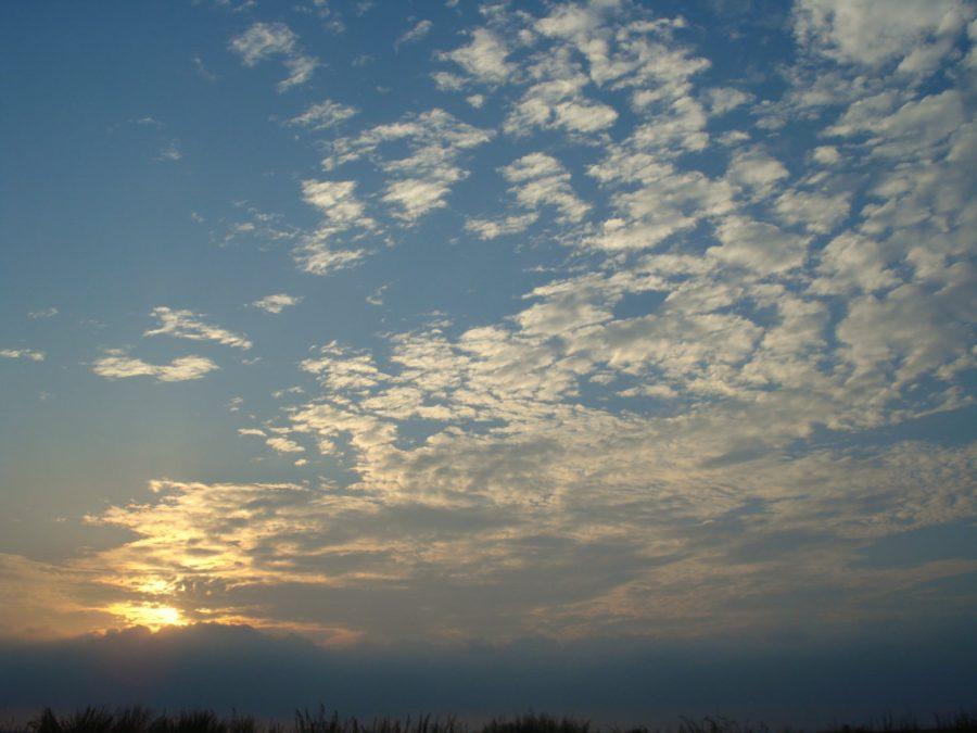 Cerul pe înserat, Rezervația Delta Dunării