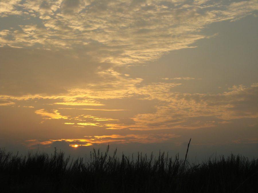 Apus de soare în Rezervația Delta Dunării