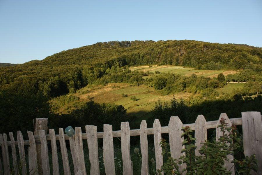 Dealurile din jurul satului și plațul vecinului, Banatul Montan, România