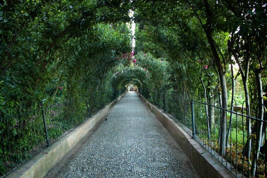 Alee în grădinile Generalife