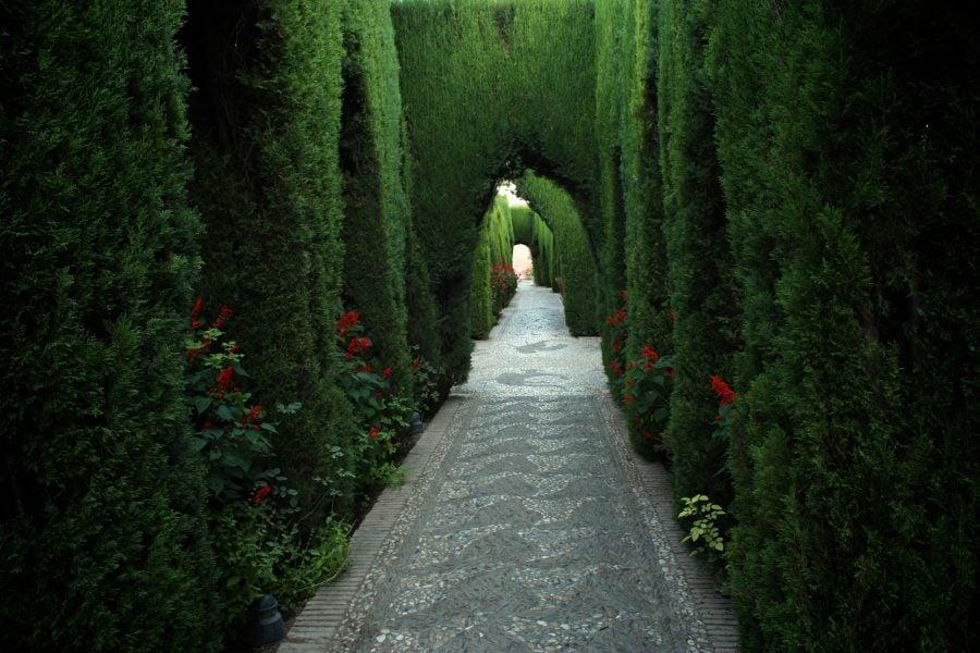 Generalife, grădini verzi, Alhambra, Granada, Spania