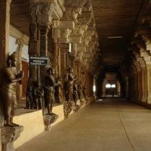 Sculpturi în templul Nellaiyappa, Tirunelveli, Tamil Nadu, India