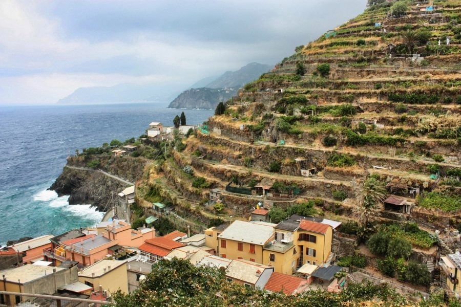 Viile terasate de lângă Manarola, Cinque Terre, Italia