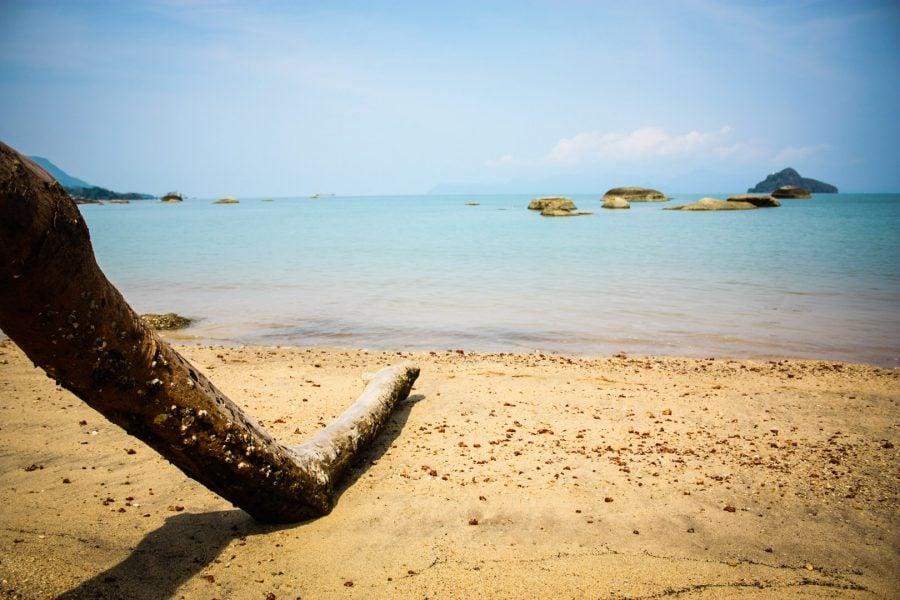 Lemn pe plaja cu nisip negru din Langkawi, Malaezia