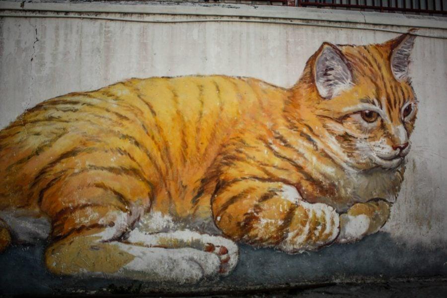 Penang Street Art - Pisică leneşă