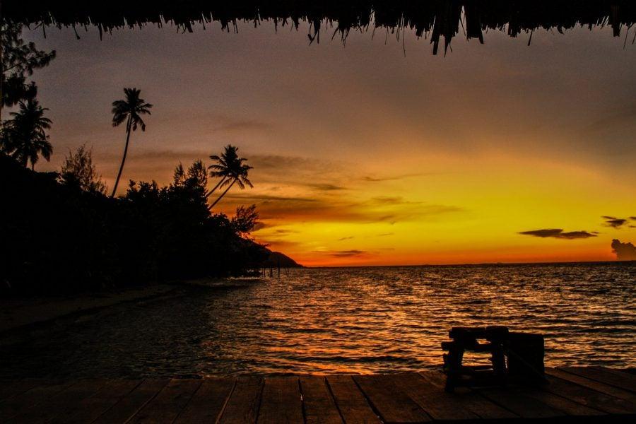 Apus portocaliu în insulă tropicală, Raja Ampat, Papua