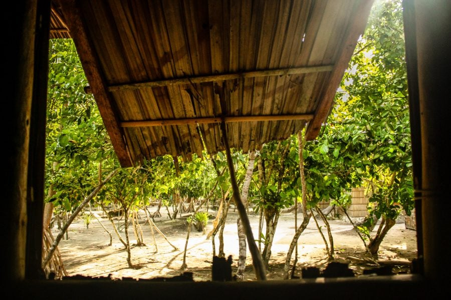 Fereastră colibă de bambus în junglă - Papua