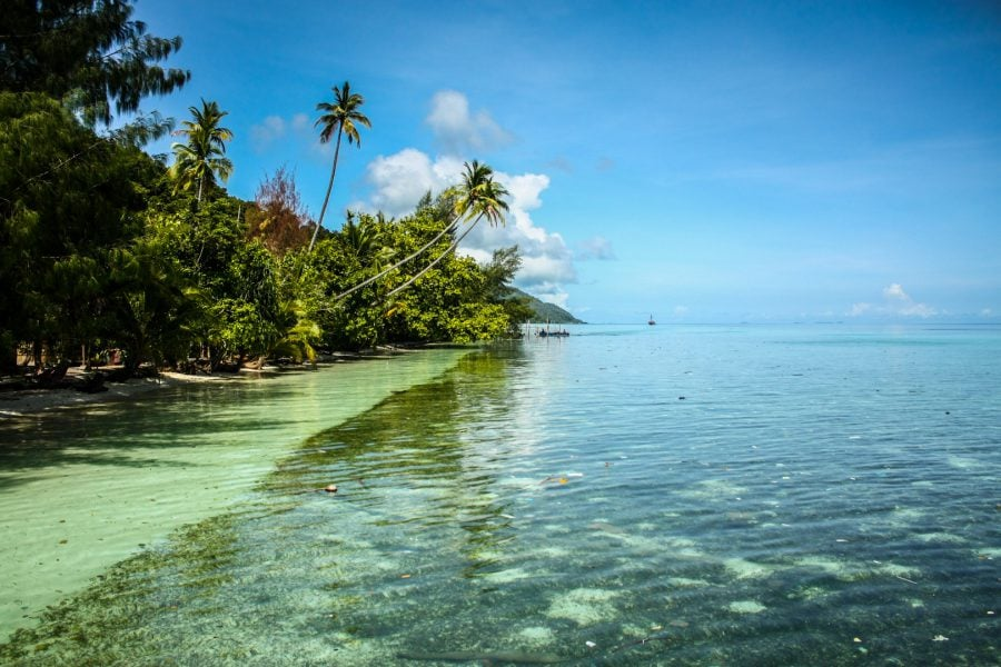 Plaja perfectă, Raja Ampat, Papua, Indonezia
