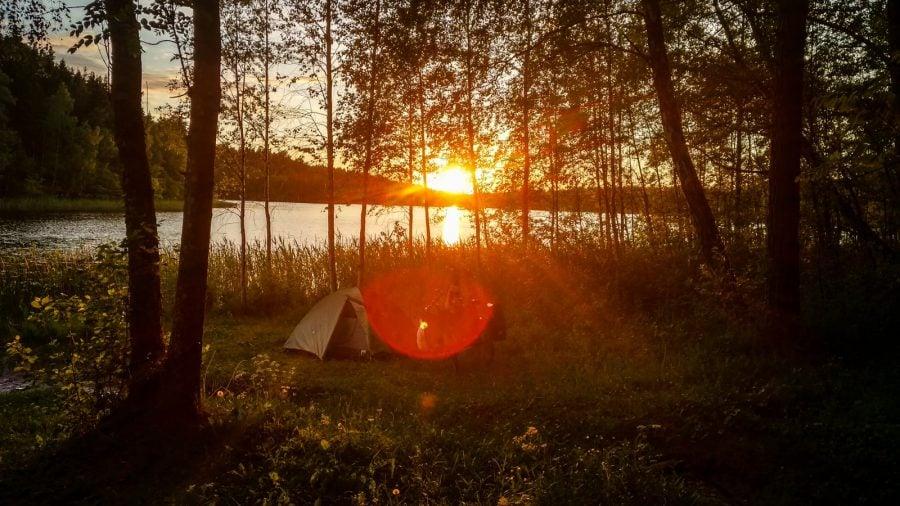 Apus în pădure, Suedia