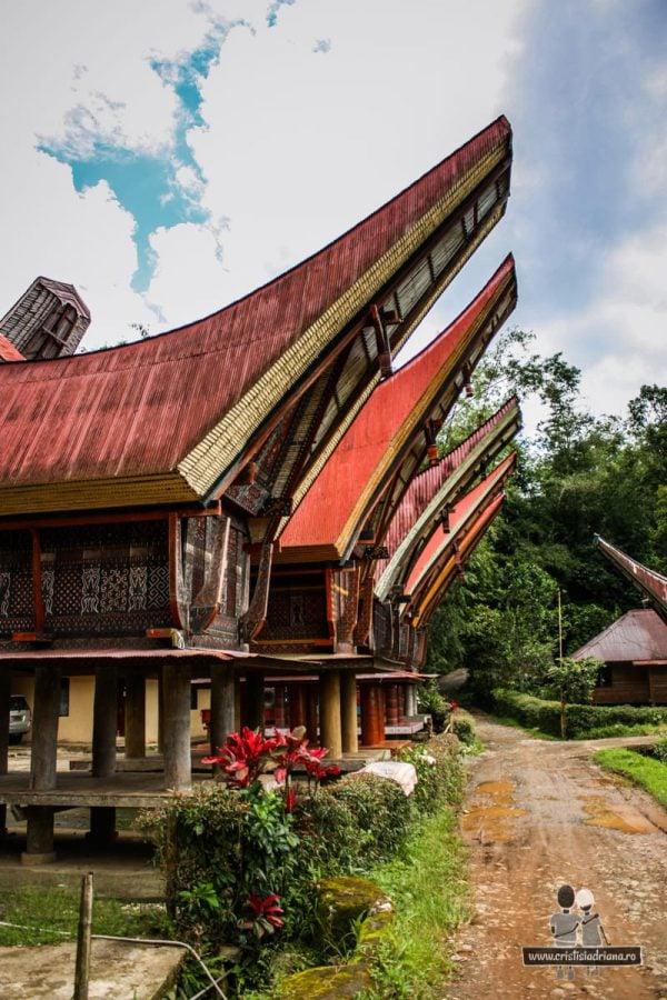 Case cu acoperișuri înalte