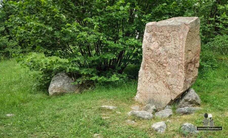 Rune pierdute prin pădure