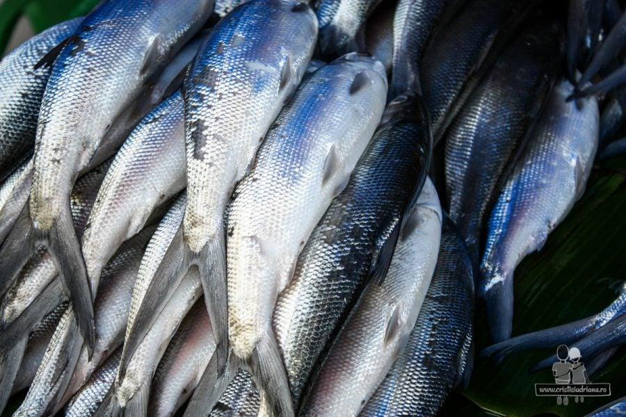 Pește în piață, Rantepao