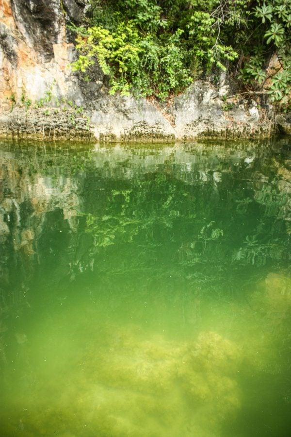Apă verde în Lake of Pregnant Maiden, Langkawi