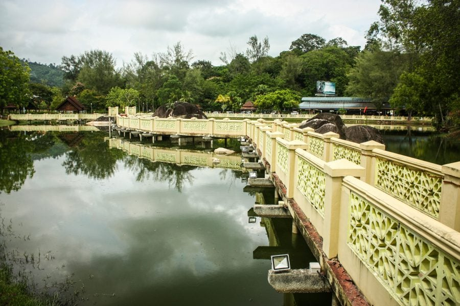 Poduri peste lac