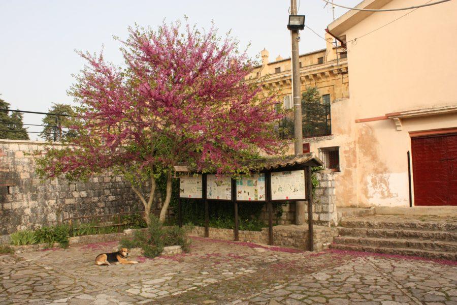 Ficuzza, Sudul SIciliei
