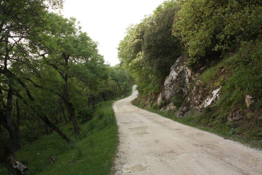 Prin Ficuzza, Sicilia