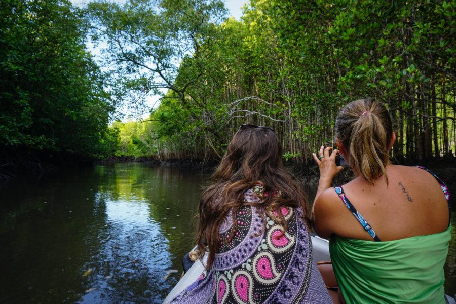 Girls in mangroves