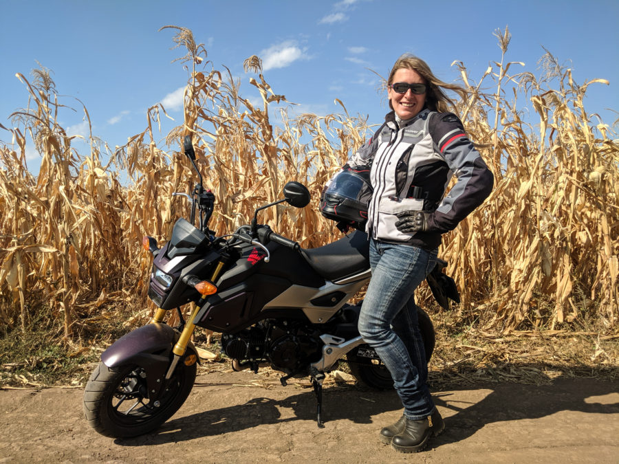 Grom in a corn field