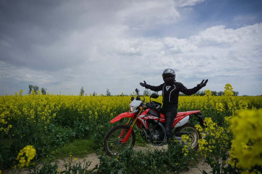 Motorcycle in rapeseed flower field
