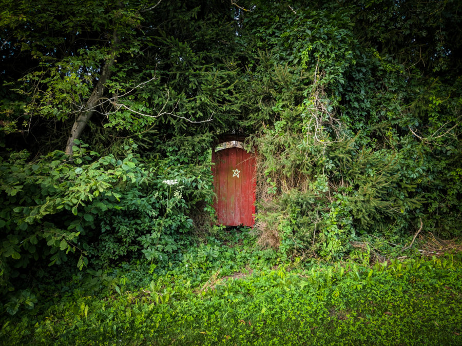 Red door in the forest